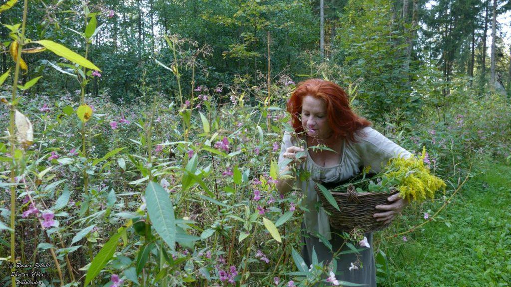 Mit allen Sinnen den Wald und die Natur erfahren, eine Frau riecht an Waldpflanzen